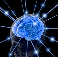 Teenage Brain i2